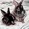 Пазл: Кролики на снегу (Gray rabbits in snow puzzle)
