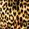 Пазл: Леопард (Jigsaw: Leopard Pattern)