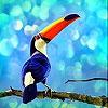 Пятнашки: Цветастая птичка (Colored beaked bird slide puzzle)