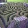 Лабиринт (Maze)