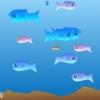 Аквариумные рыбки (Fichy)