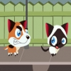 Беги, котенок, беги (Run, Kitty, run)