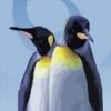 Пингвиньи прыжки (Ice breacoute)