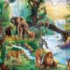 Джунгли после дождя (Rain Forest Jungle Puzzle)