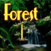 Охота за сокровищами в волшебном лесу (Treasure Hunt Forest)