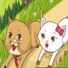 Кошачье царство (kitty kingdom)