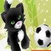 Футбол кошек и собак (Pet soccer)