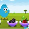 Фрукты для птиц (Feed the fruit)