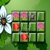 Цветы на память (Flower memory match)