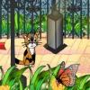 Приключения котенка в городском парке